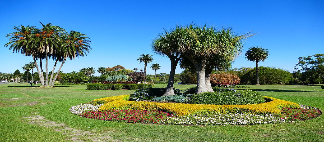 Wandern in Ostaustralien, Sydney Paddington, Centennial Park