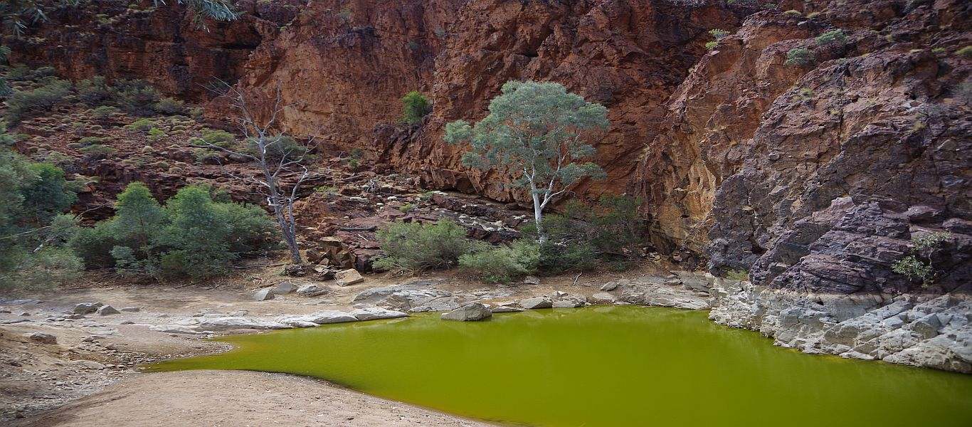 Wandern in Südaustralien, Arkaroola, Bararranna-Schlucht