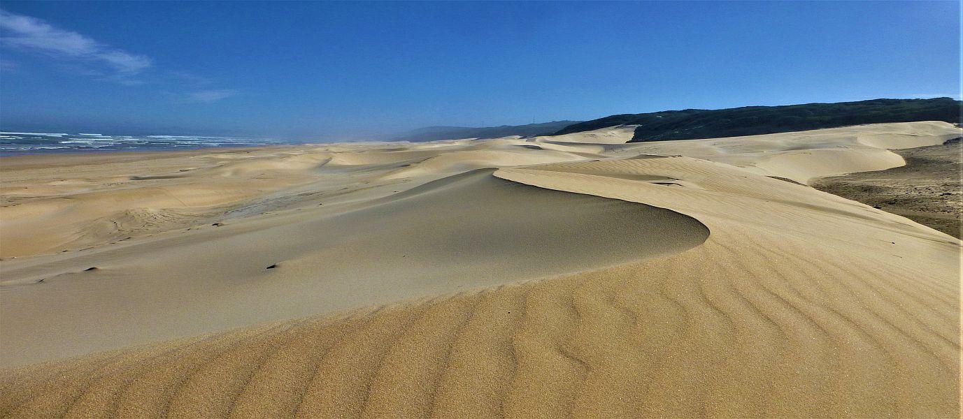 Wandern in Afrika, Südafrika, Port Elizabeth, Island Nature Reserve