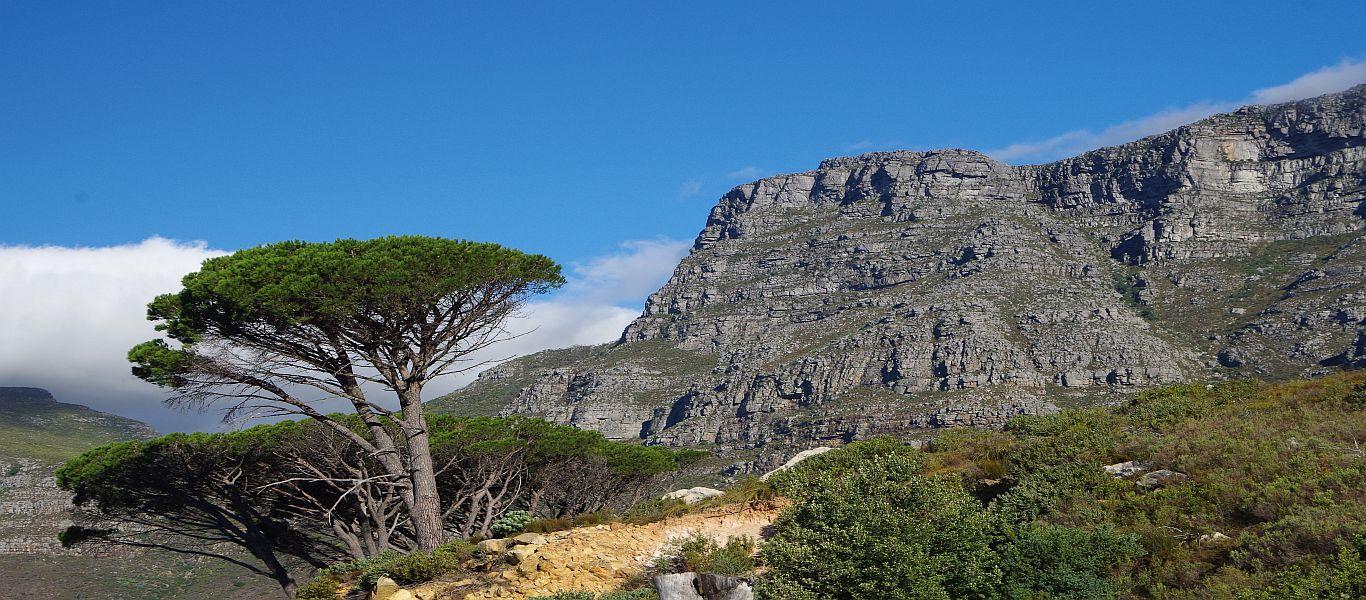 Wandern in Afrika, Südafrika, Kapstadt, Tafelberg